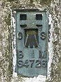Detail of trig. point - geograph.org.uk - 288109.jpg
