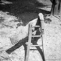 Detajl pluga brez lemeža od zadaj, Korita 1957 (2).jpg
