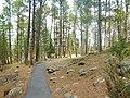 Devils Hole National Monument (34978546166).jpg