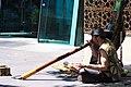 Didgeridoo (21619643).jpeg