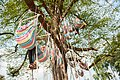 Dineren in de boom op Mañana Mañana.jpg