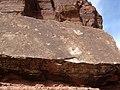 Dinosaur Tracks dyeclan.com - panoramio (1).jpg