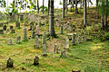 Dolní Žandov, Úbočí, Jewish cemetery 3.jpg