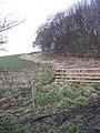 Downans Plantation - geograph.org.uk - 1078979.jpg