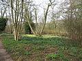 Dr. Jac. P. Thijssepark - Amstelveen (5558238759).jpg