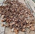 Dry yam peels.jpg