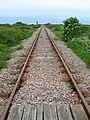 Dungeness Railway - geograph.org.uk - 445709.jpg