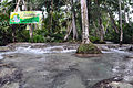 Dunns River Finish Photo D Ramey Logan.jpg