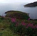 Dunree Head, Irland, Bild 2.jpg