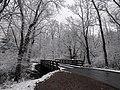 Early season snow in Cades Cove--Basia Gawin, 11 12 19 (49070632671).jpg