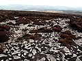 Earnshaw Ridge - geograph.org.uk - 398700.jpg