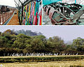 Ecological peace belt to be built in DMZ (4491978586).jpg