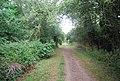Eden Valley Path, Haysden Country Park - geograph.org.uk - 2045542.jpg