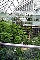 Edvard Anderson's greenhouse.jpg