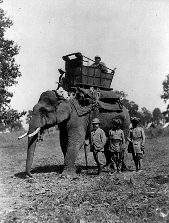 Edward (front left) in India, 1876 Edward, Prince of Wales, with elephant, Terai cph.3b08927.jpg
