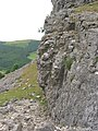 Eglwyseg Crags, above Rock Farm - geograph.org.uk - 186302.jpg