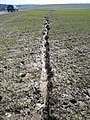 Erosion Furchen031.jpg