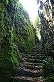 Escalier - Carlat - Cantal.jpg