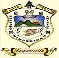 Escudo de Huayacocotla.jpg