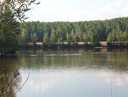 rio esla