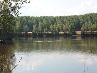 Esla (river) - View of the Esla River
