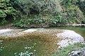Estiaje en el río Cares (Coto La Encina) - panoramio.jpg