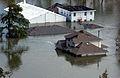 FEMA - 14977 - Photograph by Jocelyn Augustino taken on 08-30-2005 in Louisiana.jpg