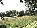 Facing Summeryards Wood, north of Heaverham - geograph.org.uk - 235509.jpg