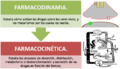 Farmacocinetica.png