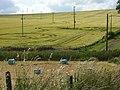 Farmland, Chaddleworth - geograph.org.uk - 875570.jpg