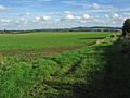 Farmland at Barkestone-le-Vale, Leicestershire - geograph.org.uk - 63544.jpg