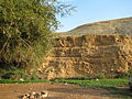 Fatzael Springs and water system 020.JPG