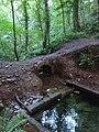 Ffynnon St Dyfnog - St Dyfnog's Well, Llanrhaeadr, Denbighshire, Wales 06.jpg