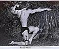 Fisicoculturismo argentino AFCA 1ª lugar Torneo Mr Valentin Alsina 1970 categoria Novicios.jpg altura 1,85 mts peso 89 kilos,pose de espalda.jpg