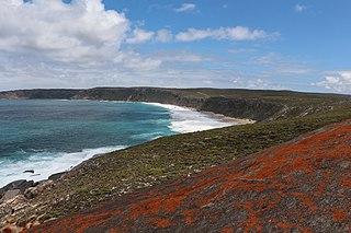 Kangaroo Island island in South Australia