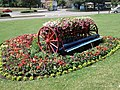 Floral display near Mill Common, Huntingdon - geograph.org.uk - 1425642.jpg