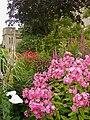 Flowers in The Mill Garden.jpg