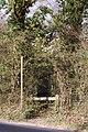 Footpath, Hillbury Road, Alderholt, Dorset - geograph.org.uk - 1222684.jpg