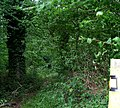 Footpath into woods - near Wiltshire College, Lackham - geograph.org.uk - 942226.jpg