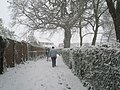 Footsteps in the snow on School Path - geograph.org.uk - 752259.jpg