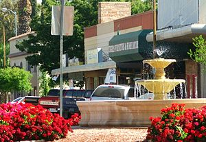 Patterson, California - A fountain in one of many Patterson roundabouts