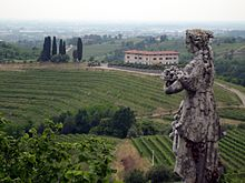 Vigneti in Friuli, Abbazia di Rosazzo