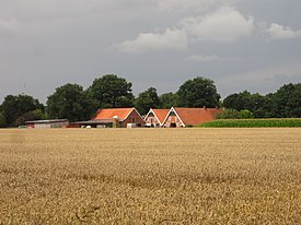 Gölenkamp, Germany - panoramio - Roland Meijerink.jpg