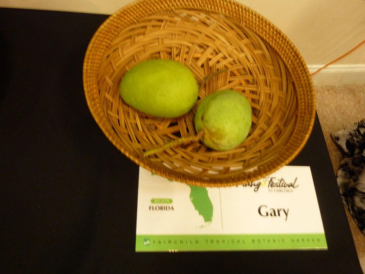 Gary (mango) - Wikipedia