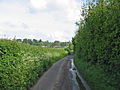 Gascoignes Lane, Shaftesbury, Dorset. - geograph.org.uk - 440477.jpg