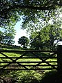 Gate into field at Loughwood - geograph.org.uk - 440453.jpg