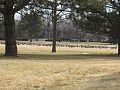 Geese in a Fort Collins baseball field 2 (11655109015).jpg