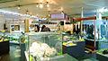 Genbudo-Museum Toyooka.jpg