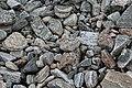 Geröll aus Lewis-Gneis an der Küste von Great Bernera.jpg
