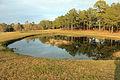 Gfp-georgia-reed-bingham-state-park-kiddie-fishing-pond.jpg